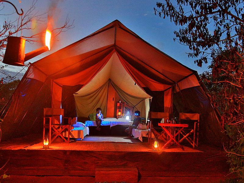 Wildlife Safari Hotels in Sri Lanka Safari Hotels in Sri Lanka Tenetd Safari C&s & Wildlife Safari Hotels in Sri Lanka | Luxury Tented Safari Camps in ...