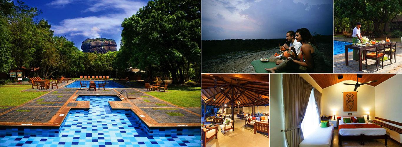 Hotel Sigiriya   Sigiriya Hotel   Hotels in Sri Lanka